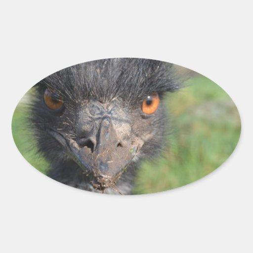 Emu Bird Stickers