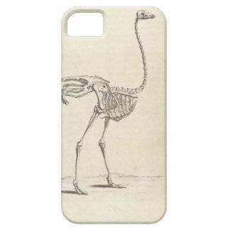 Emu skeleton iphone case
