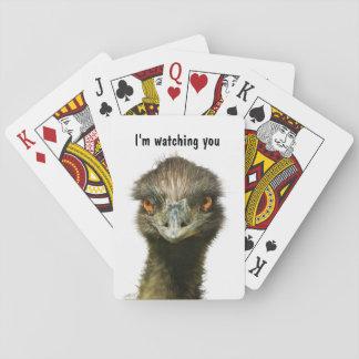 Emu Watching You Playing Cards