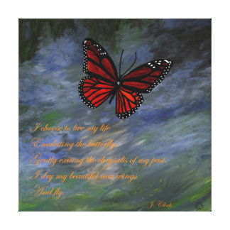 Emulating the Butterfly Canvas Print