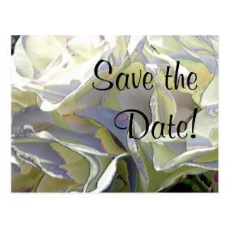 Enameled White Roses Save the Date! Postcards