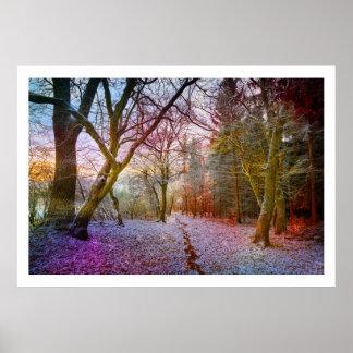 Enchanted Forest Winter Landscape Poster