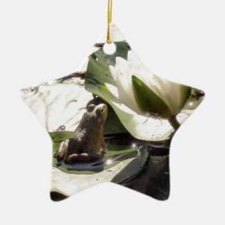 Enchanted Frog Ceramic Star Decoration