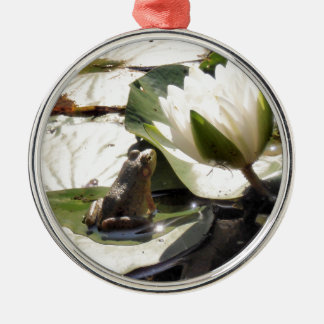 Enchanted Frog Silver-Colored Round Decoration