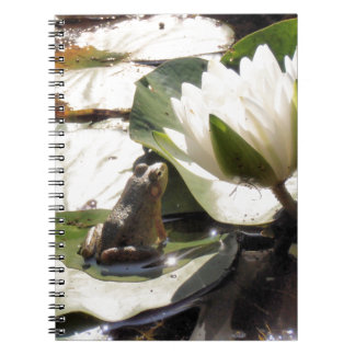 Enchanted Frog Spiral Note Books