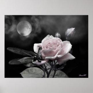 enchanted nights pink poster