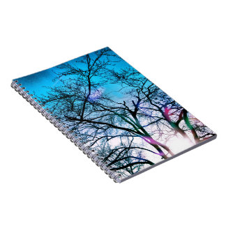 Enchanted Winter Notebook