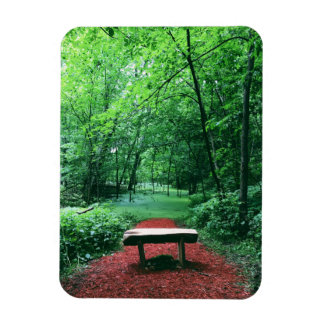 Enchanted Woods Magnet