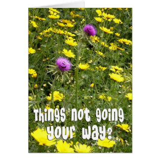 Encouragement - Funny Thistles Greeting Card
