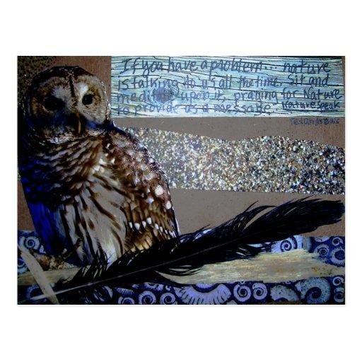 Encouragement Owl Post Cards