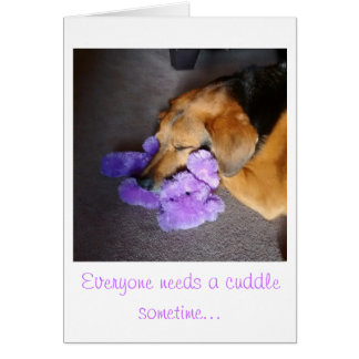 Encouragement Puppy takes Teddy Bear Cuddles Card