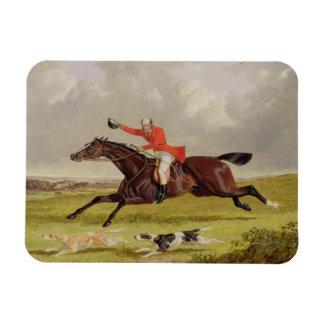 Encouraging Hounds, 1839 (oil on panel) Flexible Magnet