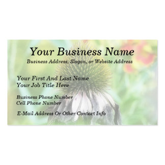 End Of The Season - Coneflower Close Up Business Card