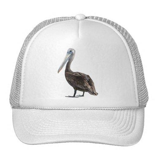 Endangered Brown Pellican (protected species) Trucker Hat