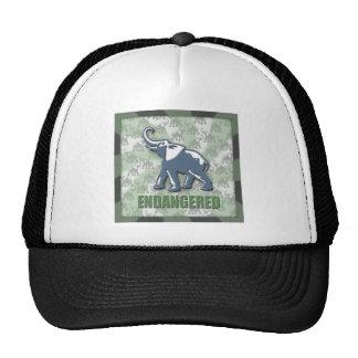 Endangered Trucker Hat