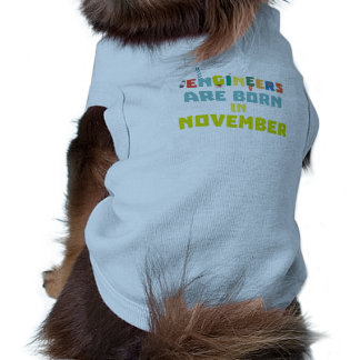Engineers are born in November Za7ra Shirt