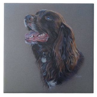 Engish Cocker Spaniel dog. Fine art painting. Ceramic Tile