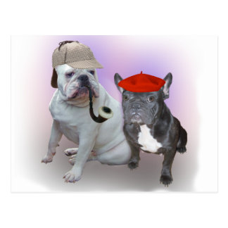 English and French bulldogs Postcard