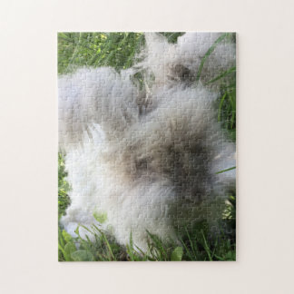 "English Angora Rabbit ""Bradley"" Jigsaw Puzzle"