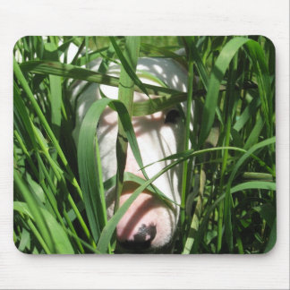 English Bull Terrier Hiding in the Grass Mouse Pad