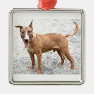 English Bull Terrier Ornament