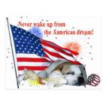 English Bulldog – American Dream