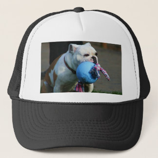 English Bulldog cap