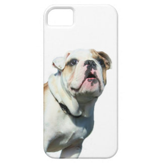 English bulldog case for the iPhone 5
