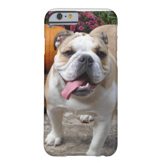 English Bulldog Cute Funny iPhone 6 case covers ca Barely There iPhone 6 Case