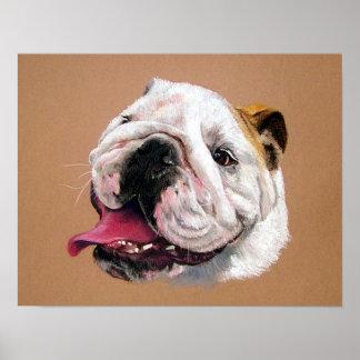 English Bulldog Dog Portrait Poster Print