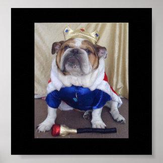 English Bulldog dressed as royalty Poster! Poster