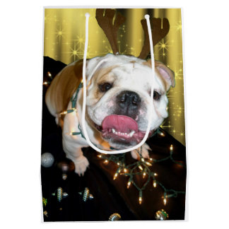 English bulldog holiday gift bag
