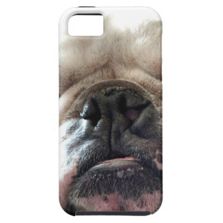 English Bulldog iPhone 5 Cover