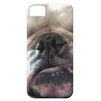 English Bulldog iPhone 5 Covers