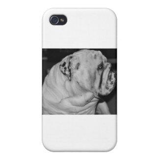 English Bulldog iPhone 4 Cases