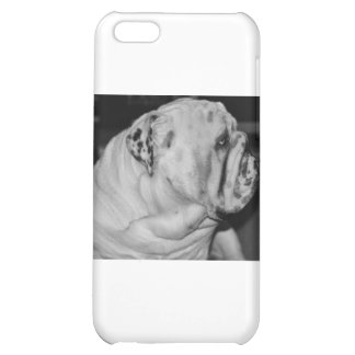 English Bulldog Cover For iPhone 5C