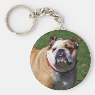 English bulldog keychain, gift idea key ring