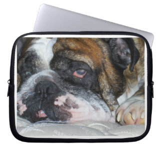 English Bulldog Laptop Sleeve