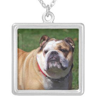 English bulldog necklace, gift idea square pendant necklace