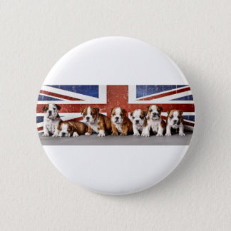 English bulldog puppies 6 cm round badge