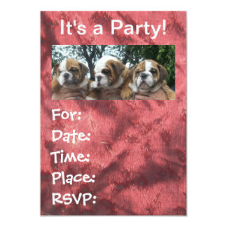English Bulldog Puppies party Invitations
