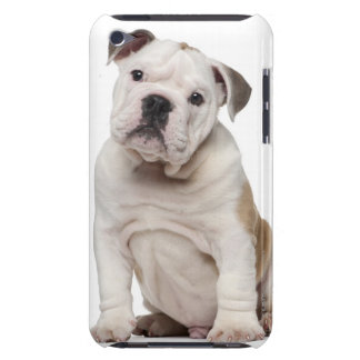 English bulldog puppy (2 months old) iPod touch case