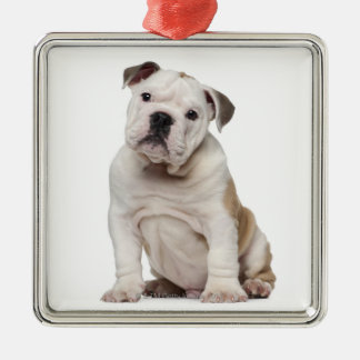 English bulldog puppy (2 months old) metal ornament