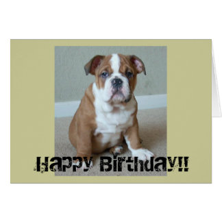 English Bulldog Puppy Greeting Card