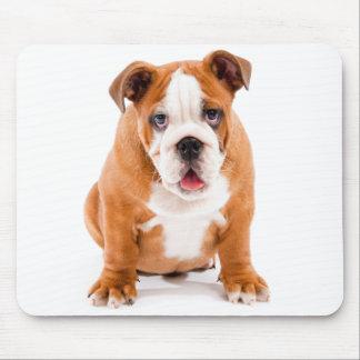 English Bulldog Puppy Dog Mousepad
