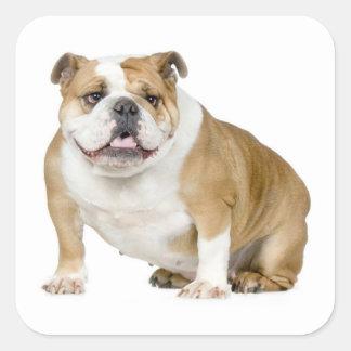 English Bulldog Puppy Dog Sticker / Seal Sticker