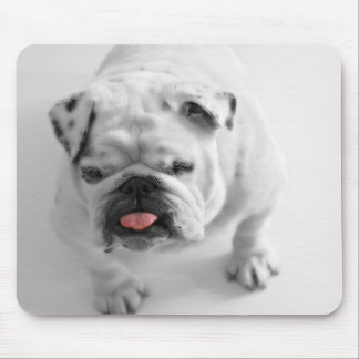 English Bulldog Puppy Mouse Pad
