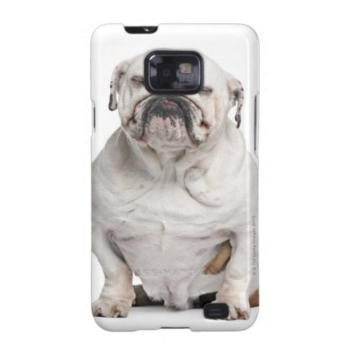 English Bulldog, sitting in front of white Samsung Galaxy Covers