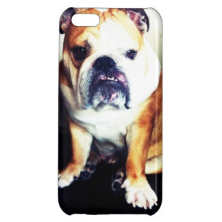English Bulldog Staring Contest iPhone Case Cover For iPhone 5C