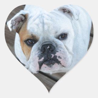 English Bulldog Stickers